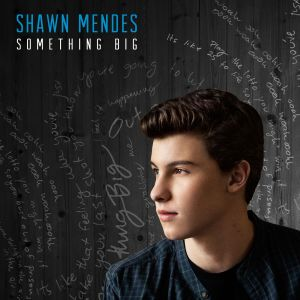 Shawn-Mendes_Something-BigV2-1414607627