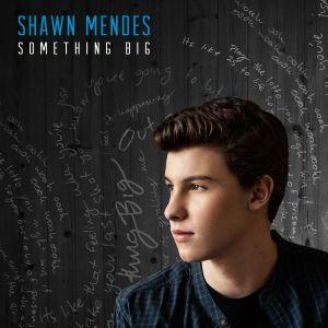 Shawn-Mendes_Something-BigV2-1414607627